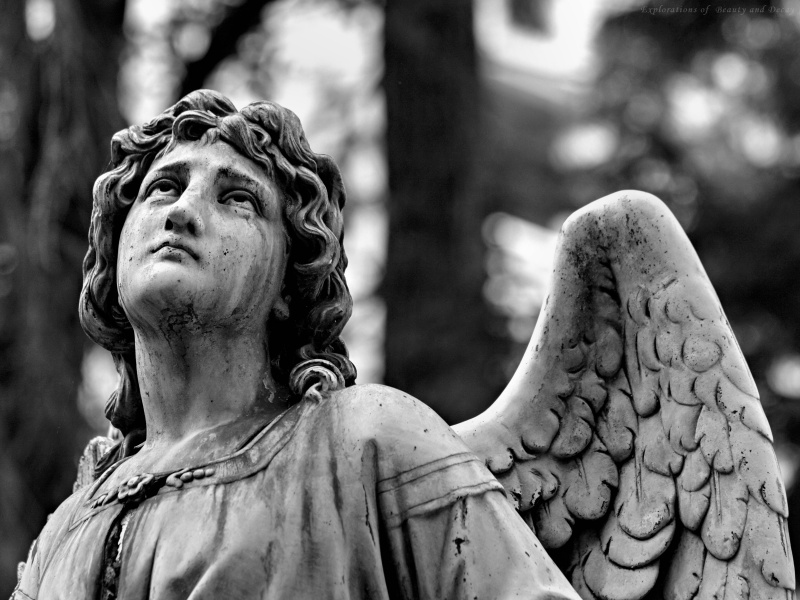 Archangel Michael Hd Wallpaper 8tracks Radio When Angels Cry 24 Songs Free And