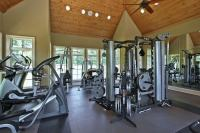 27 Luxury Home Gym Design Ideas for Fitness Buffs