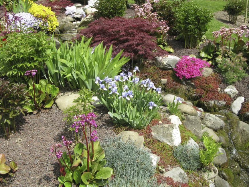 Vorgarten Anlegen Halbschatten 32 Backyard Rock Garden Ideas