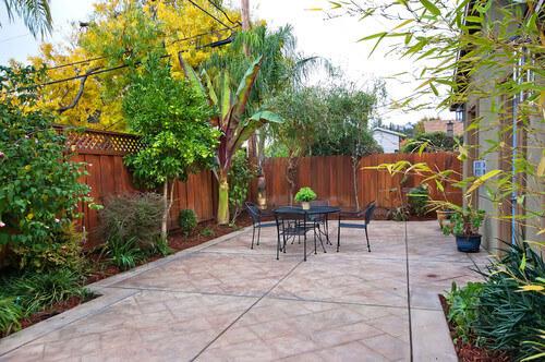 24 Delicious Backyard Fruit Tree Ideas