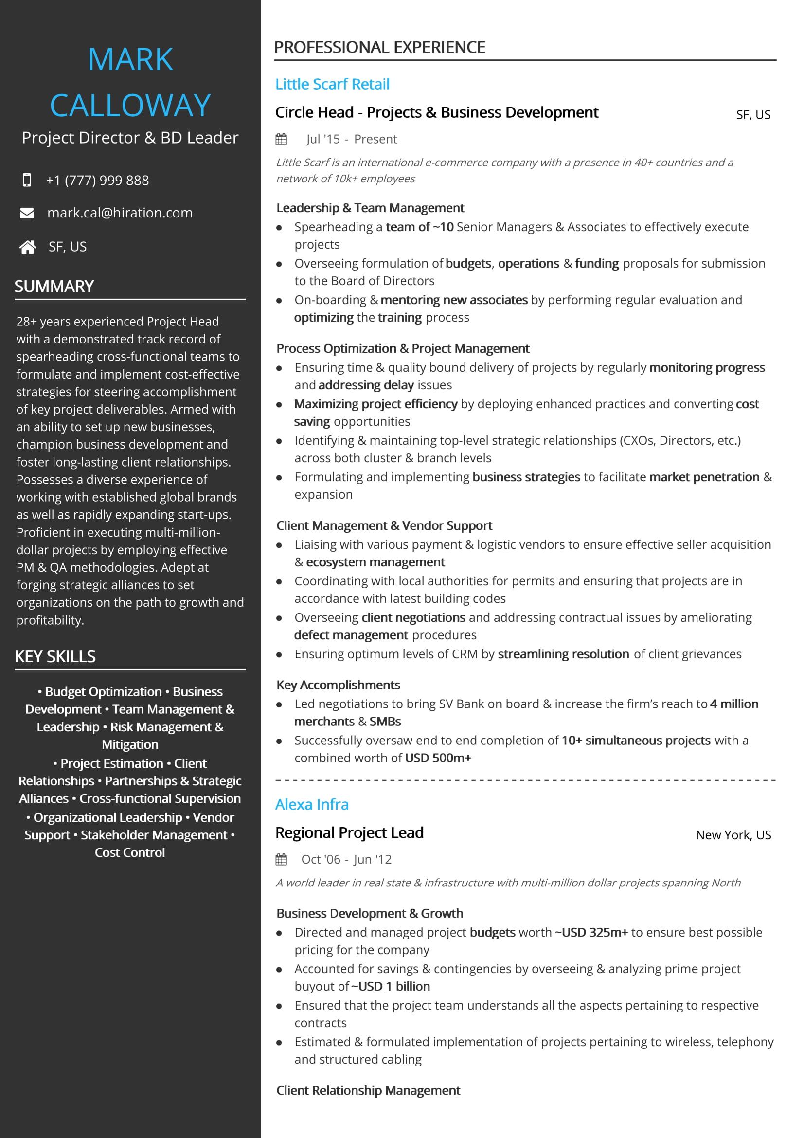 best program manager resume examples