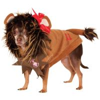 Wizard of Oz Cowardly Lion Pet Costume : The Animal ...