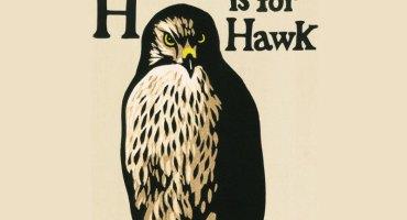 hisforhawk