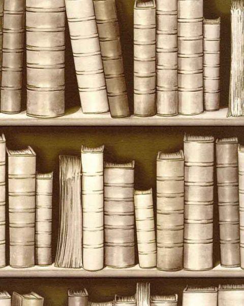 3d Effect Bookcase Wallpaper Sepia F92307 3d Effect Bookcase Bookshelf Library