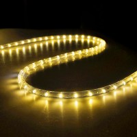 50' LED Rope Light Flex 2-Wire Outdoor Holiday Dcor ...