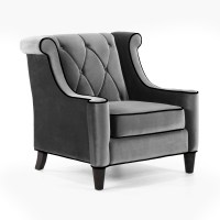 Occasional Chair - the living room