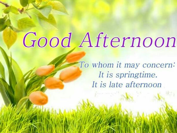 Good Evening Wallpaper With Quotes In Hindi மதிய வணக்கம் Arivarasan Added A New Image Sharechat
