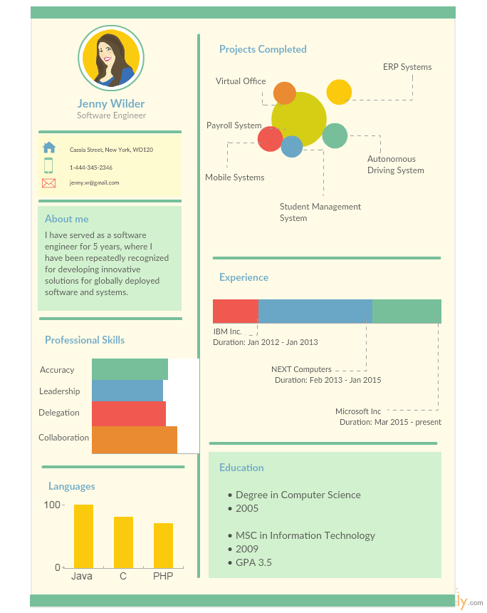 infographic resume for software engineer