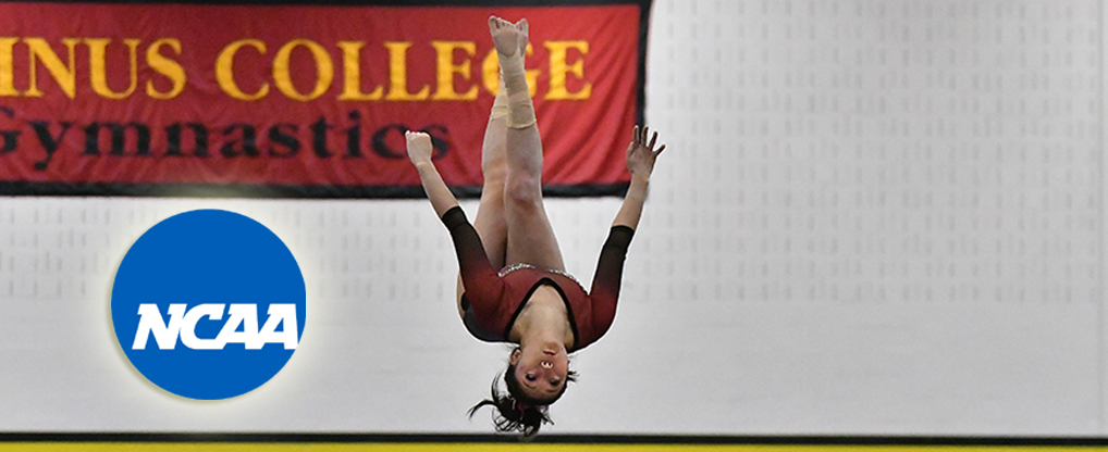 Ursinus' Palladino Selected for NCAA Division III Student Immersion Program