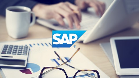 Udemy - SAP for Beginners - Comprehensive Guide 2016 - student reviews - sap for beginners