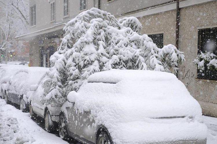 Un árbol caído sobre los vehículos cubiertos de blanco en Roma, Italia. (Foto Prensa Libre: EFE)