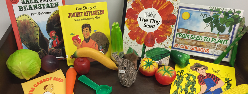 Checkout a Book Box at Central or Buder St Louis Public Library - checkout a book
