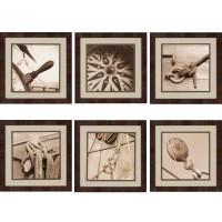 Nautical Framed Wall Art (Set of 6)  eFurnitureMart ...