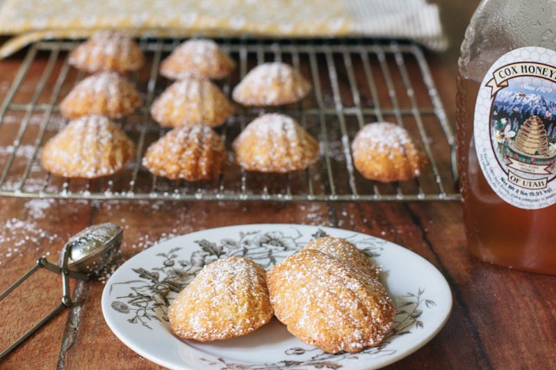 Utah Honey Madeleines Recipe Vintage Mixer