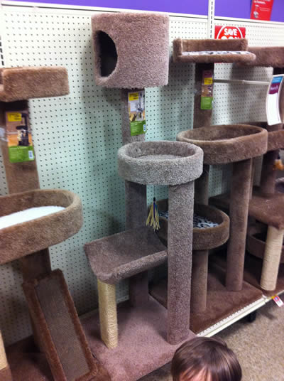 cat furniture cheap