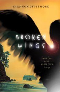 broken-wings-book