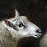 Sheep in Forest 6