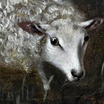 Sheep in Forest 7