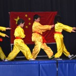 Children Wushu - Beginner  (3) (Medium)