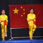 Children Wushu - Beginner  (8) (Medium)