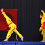 Children Wushu - Beginner  (9) (Medium)