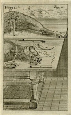 Shortly after Lower's description of transfusion was published in Philosophical Transactions, Robert Boyle released a series of questions about the effects of transfusion on the recipient. Image: Elsholtz, Clysmatica nova (Brandenburg, 1667). Credit: Historical Medical Library of the College of Physicians of Philadelphia.