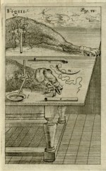 Before human transfusion was undertaken, tests were conducted with dogs, first by English physician Richard Lower. Image: Johann Sigismund Elsholtz, Clysmatica nova (Brandenburg, 1667). Credit: Historical Medical Library of the College of Physicians of Philadelphia.