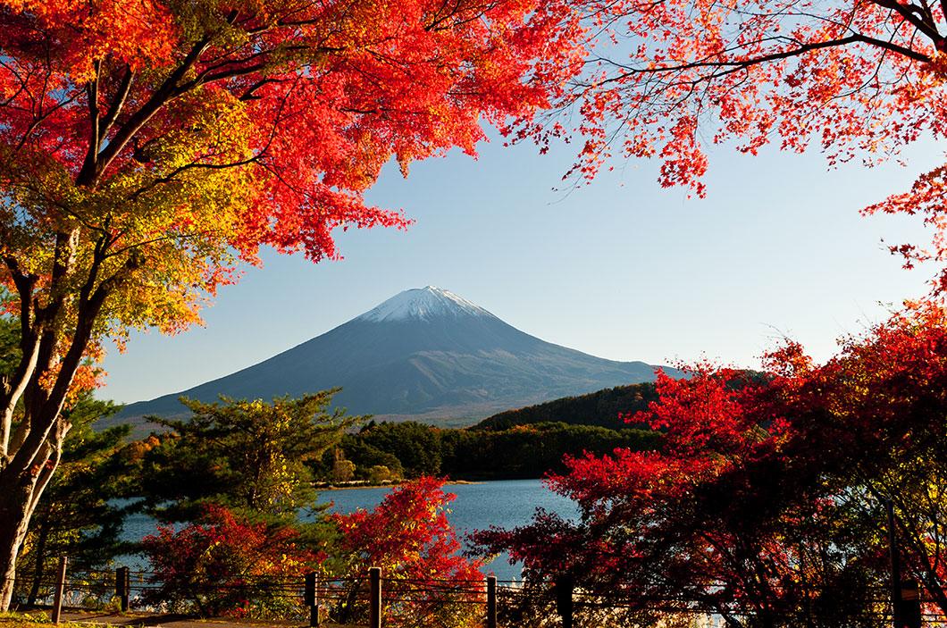 Japan Fall Wallpaper L Image De La Semaine Les Couleurs Automnales Subliment
