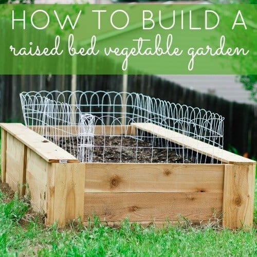 Daily Mom How To Build A Raised Bed Vegetable Garden