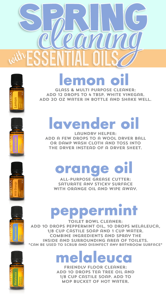 Spring Cleaning With Essential Oils 187 Daily Mom