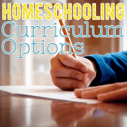 Homeschooling Curriculum Options 2
