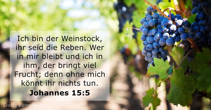 Gospel Wallpapers With Quotes Johannes 15 5 Bibelvers Des Tages Dailyverses Net