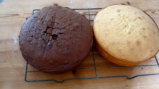 Chocolate and butter packet cakes