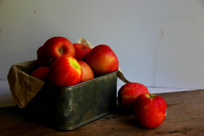 apples photography