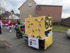 28.02.2014 - Karnevalszug Roesberg 21