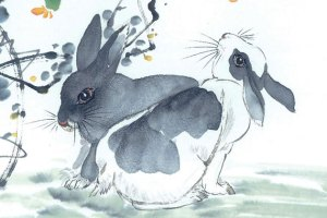 Любовен китайски хороскоп – заек