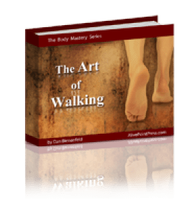 3D-The Art of  Walking