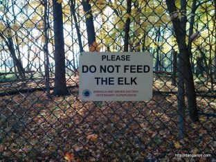 DO NOT FEED THE ELK! - Busse Forest Elk Pasture in Elk Grove, IL.