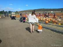 Mommy and Abby looking for a pumpkin.