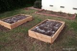 Raised vegetable bed.