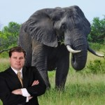 Why are human animals such hypocrites? Because we are little lawyers riding big elephants