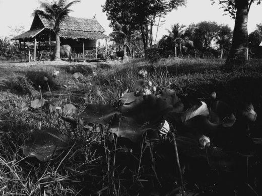 thailand-village