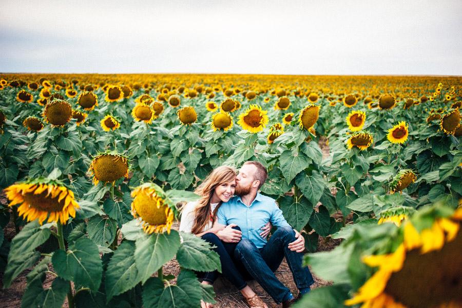 Beautiful Wedding Girl Wallpaper Denver Sunflower Fields