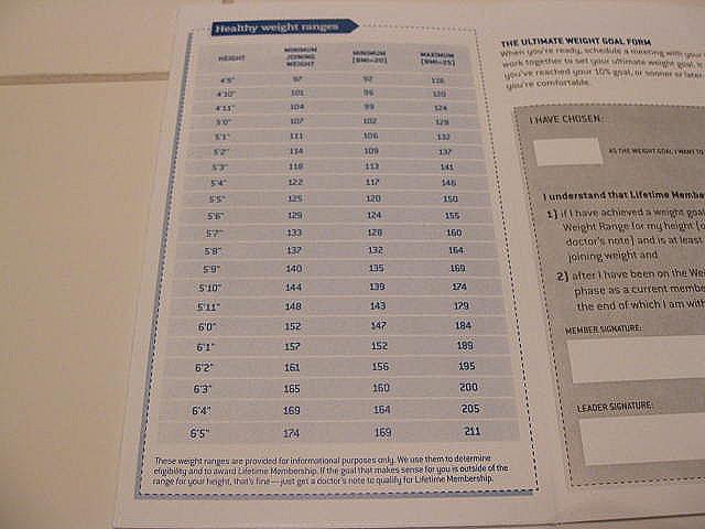 Not-Cho\u201d Average Nachos  Weight Watcher\u0027s Updates