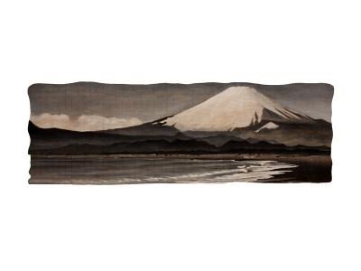 Fujisan, 2011.