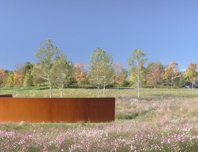 Serra_Landscape_Glenstone
