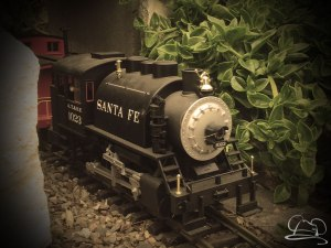 Mr. DAPs' Railway - Spring Has Sprung!