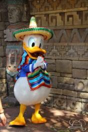 Walt Disney World - Day 1-99