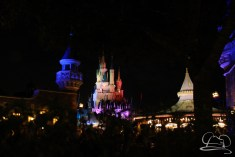 Walt Disney World Day 2 - Magic Kingdom-99