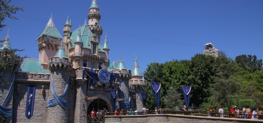 Disneyland Resort July 10, 2016-5